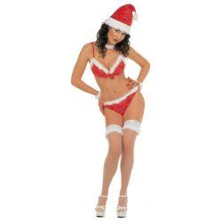 Disfraz mama Noel bikini