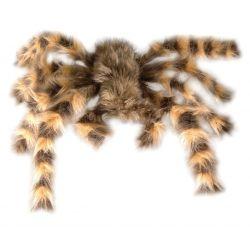 Tarantula Peluda Gigante