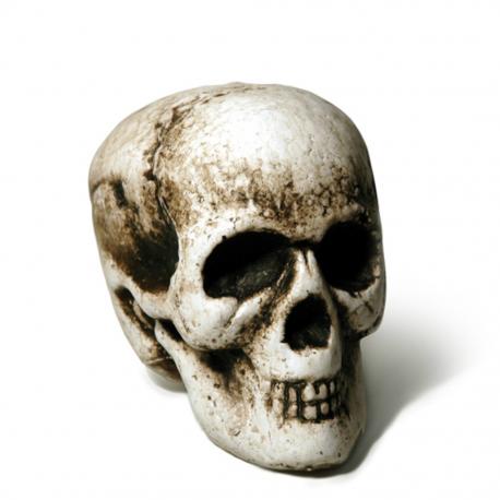 Calavera noche de Halloween Tienda de disfraces online - venta disfraces
