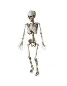 Esqueleto Articulado de 120 cm Tienda de disfraces online - venta disfraces