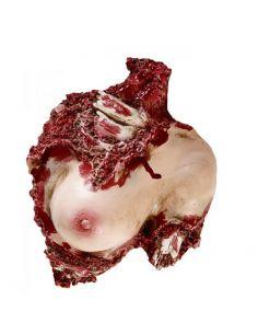 Decoración Torso de mujer ensangrentado Tienda de disfraces online - venta disfraces