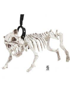 Esqueleto de Perro con correa Tienda de disfraces online - venta disfraces
