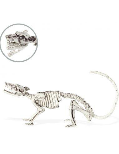 Esqueleto de Rata  Tienda de disfraces online - venta disfraces