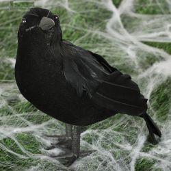 Cuervo de plumas