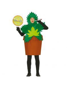 Disfraz de Planta de María para Adulto Tienda de disfraces online - venta disfraces