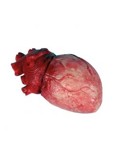 Corazón de Látex Terrorífico Tienda de disfraces online - venta disfraces