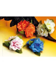 Flor Hawaiana de Clip