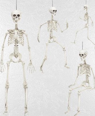Esqueletos y Calaveras para decorar tus fiesras de Halloween